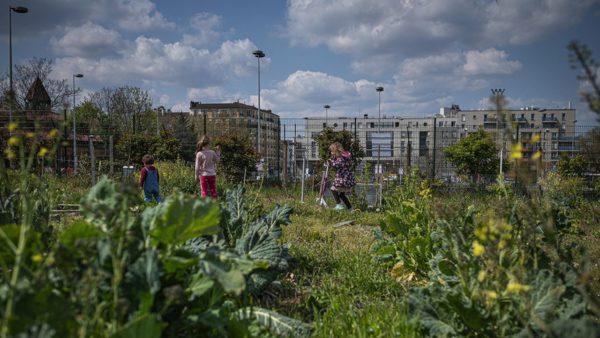 Garden Seine St Denis